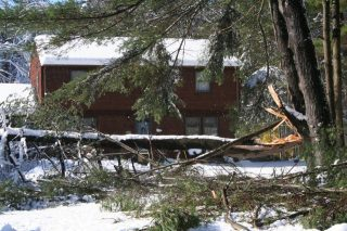 A fallen tree in the front yard of a home after an October 2011 Nor'easter took down many trees in the Pioneer Valley.