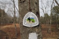 A trail marker at a trailhead at Scarborough Brook Conservation Area in Belchertown.